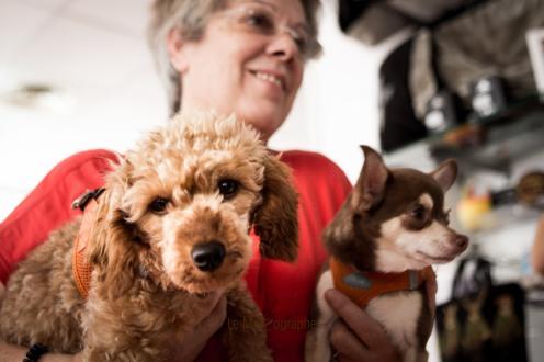 Le Centre du bien-être animal par Le MuZographe