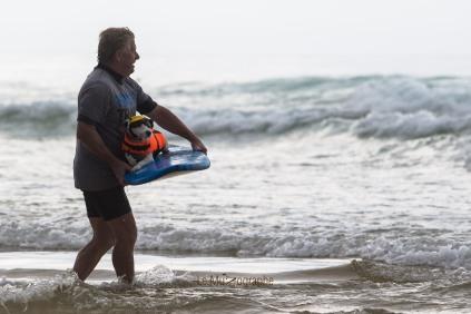 Toutous SURFEURS-125