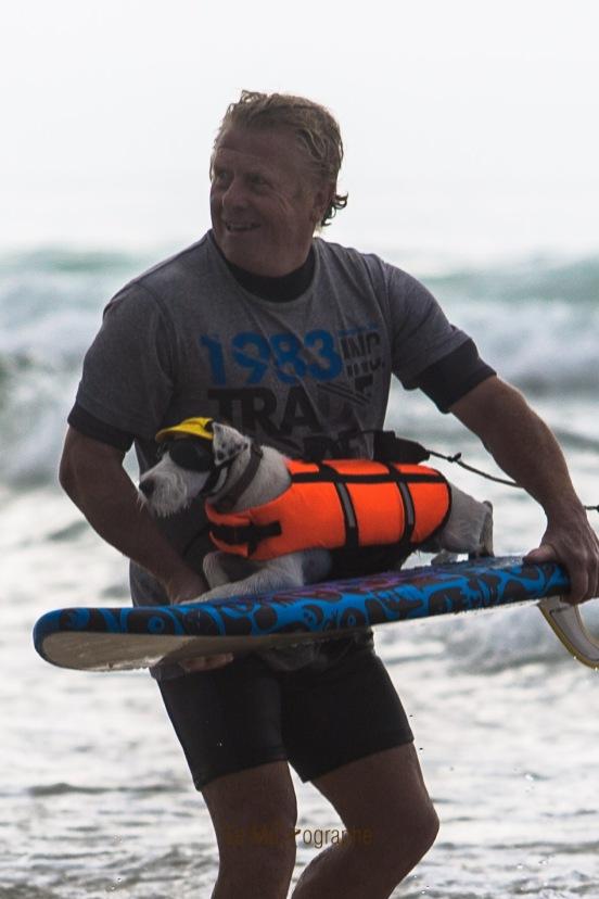 Toutous SURFEURS-126