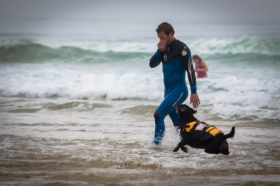 Toutous SURFEURS-58