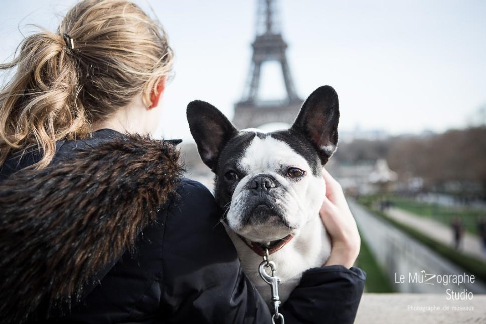 Helvète au Trocadéro © Le MuZographe, Paris
