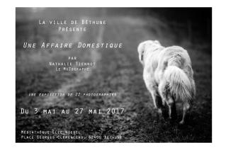 """""""Une Affaire Domestique"""" par Le MuZographe, présentée à Béthune"""