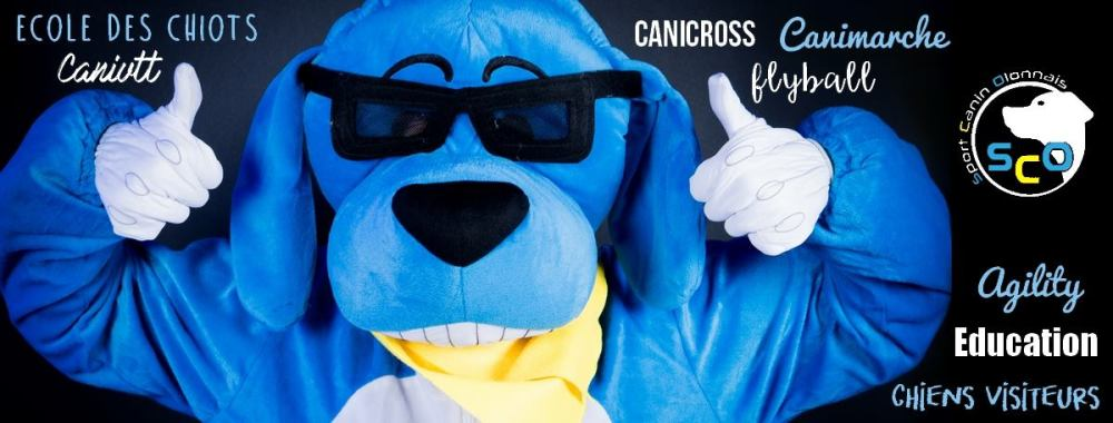 Visuel bandeau facebook du Sport Canin Olonnais
