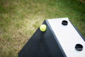 low MZ Flyball129